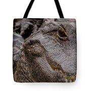 Gator Eye Tote Bag