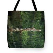 Gator In The Spring Tote Bag