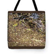 Gator In The Weeds Tote Bag