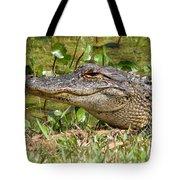 Gator Tote Bag