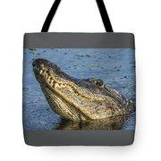 Gator Lean Tote Bag