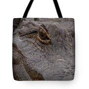 Gators Eye Tote Bag