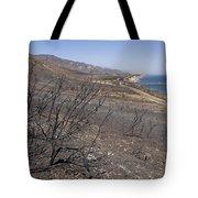 Gaviota State Park Looking East Tote Bag