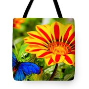 Gazania And Blue Butterfly Tote Bag
