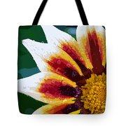 Gazania Flower Design Tote Bag