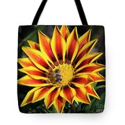 Gazania With Insect Tote Bag