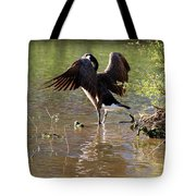 Gaze Into The Sunset Tote Bag