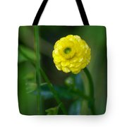 Gazing At The Morning Sun Tote Bag