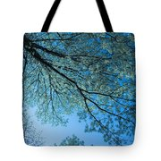 Gazing Tote Bag