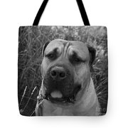 Geegee Tote Bag by Barbara Schultheis