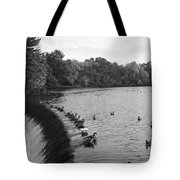 Ducks And Canada Geese On The Charles River Tote Bag
