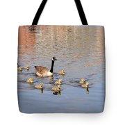 Geese And Goslings 3 Tote Bag