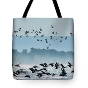 Geese And Gulls Tote Bag