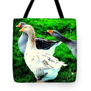 A Couple Of Friendly Geese And One Goose Ready For A Fight  Tote Bag by Hilde Widerberg