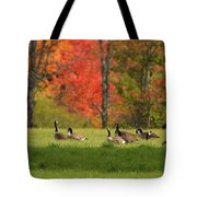 Geese In Autumn Tote Bag