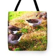 Geese In The Yard Tote Bag