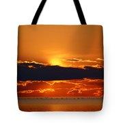 Geese Line The Horizon Tote Bag