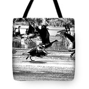 Geese On Ice Taking Flight Tote Bag