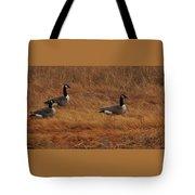 Geese On The Salt Marsh  Tote Bag