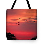 Geese On Their Sunset Arrival Tote Bag