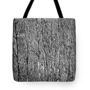 Gehiegi Tote Bag