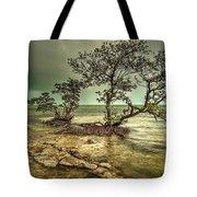 Geiger Key Shoreline Tote Bag