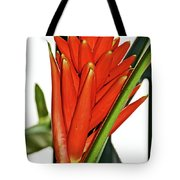 Geiger Tree Blossom In Huntington Botanical Gardens In San Marino-california Tote Bag