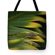 Gekco On Palm  Leaf Tote Bag