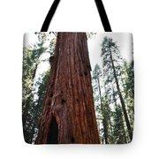 General Sherman Tree Portrait Tote Bag
