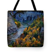 Genesee River Gorge II Tote Bag