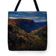 Genesee River Gorge Tote Bag