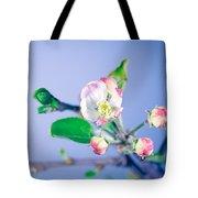 Gentle Apple Tree Flowers Tote Bag