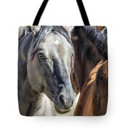 Gentle Face Of A Wild Horse Tote Bag