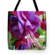 Gentle Fuschia Tote Bag by Jeff Breiman