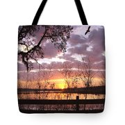Gentle Morning In The Grove Tote Bag