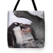 Gentoo Penguin Chick Under Whale Vertebrae Tote Bag