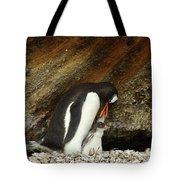 Gentoo Penguin Feeding Chicks Tote Bag