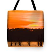 George T. Bagby State Park Sunset Tote Bag