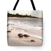 Georgian Bay Beach Tote Bag