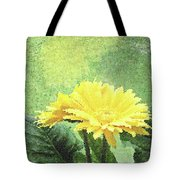Gerber Daisy And Reflection Tote Bag