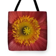 Gerber Greetings Tote Bag