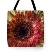 Gerbera Beauty Tote Bag
