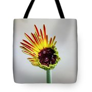 Gerbera Beginnings Tote Bag