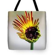 Gerbera Bloom Tote Bag
