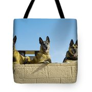 German Shephard Military Working Dogs Tote Bag