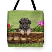 German Shepherd Puppy In Basket Tote Bag by Sandy Keeton