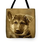 German Shepherd Puppy In Sepia Tote Bag