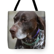 German Shorthaired Pointer Dog Tote Bag
