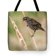 Get Away From Here Tote Bag