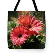 Gerberas In Coral Pink 2 Tote Bag